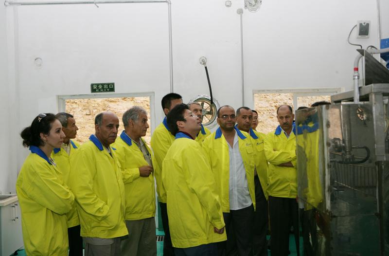 阿尔及利亚客商考察BOB体育网站集团